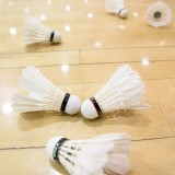 Badminton Singles